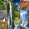 EASTERN INDIA PACKAGES